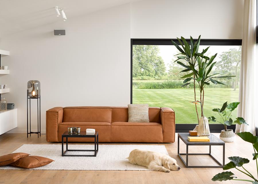 Decoratie Planten Woonkamer : Planten en bloemen in huis deba meubelen